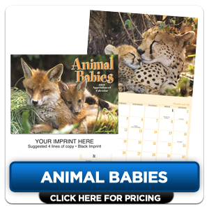 Personalized Calendars - Animal Babies!